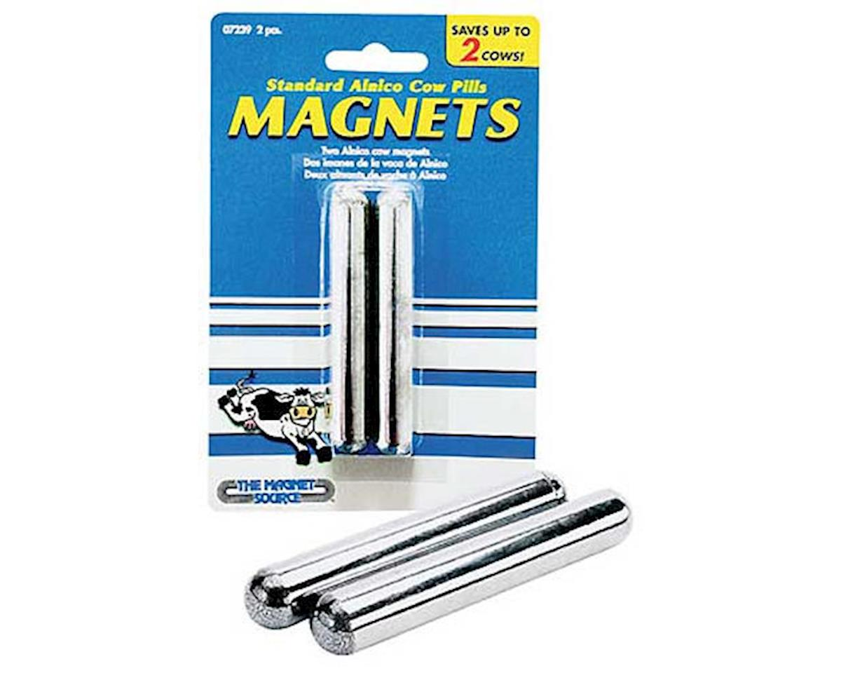 The Magnet Source 07239 Two Alnico Cow Magnets (Carded)