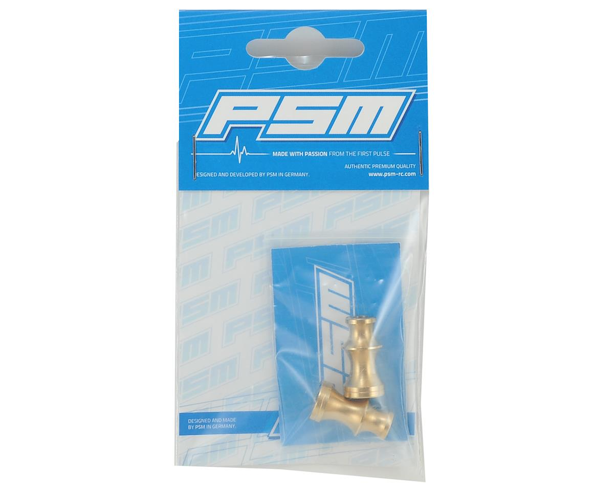 PSM RC8B3 Brass Rear Anti-Twist Balance Weight (2)
