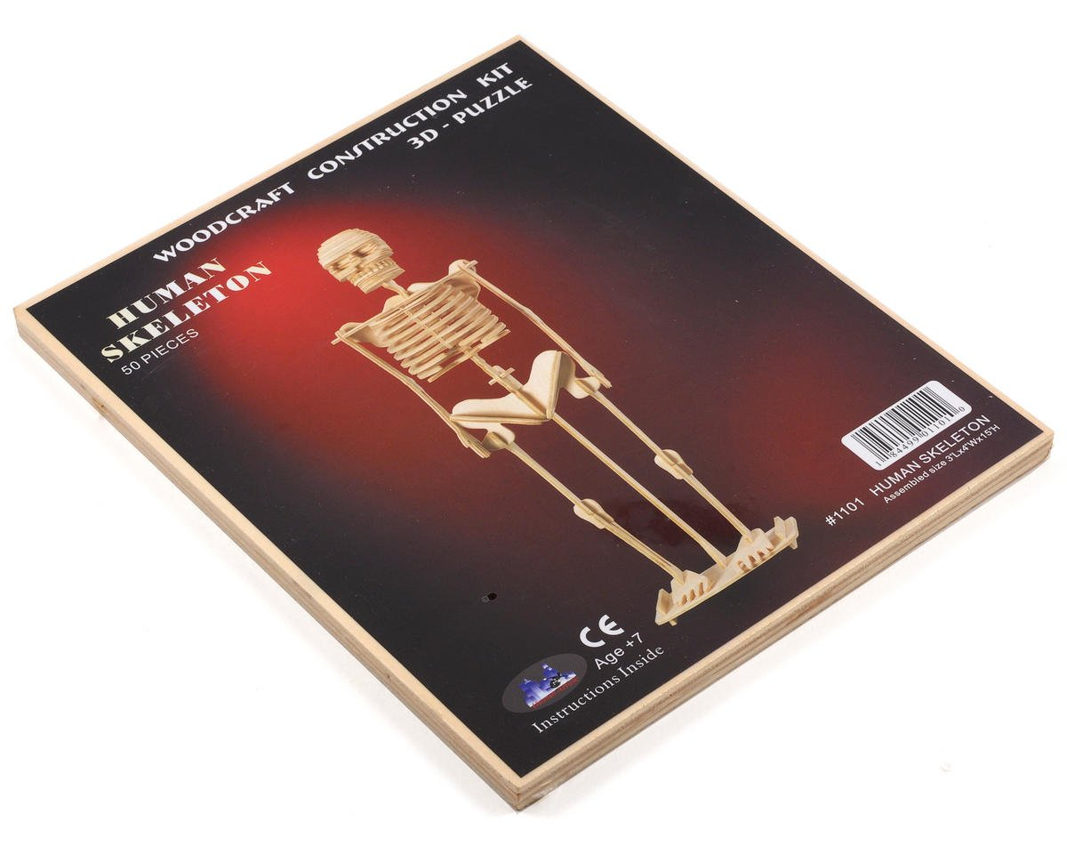 Human Skeleton 3D Puzzle by Puzzled