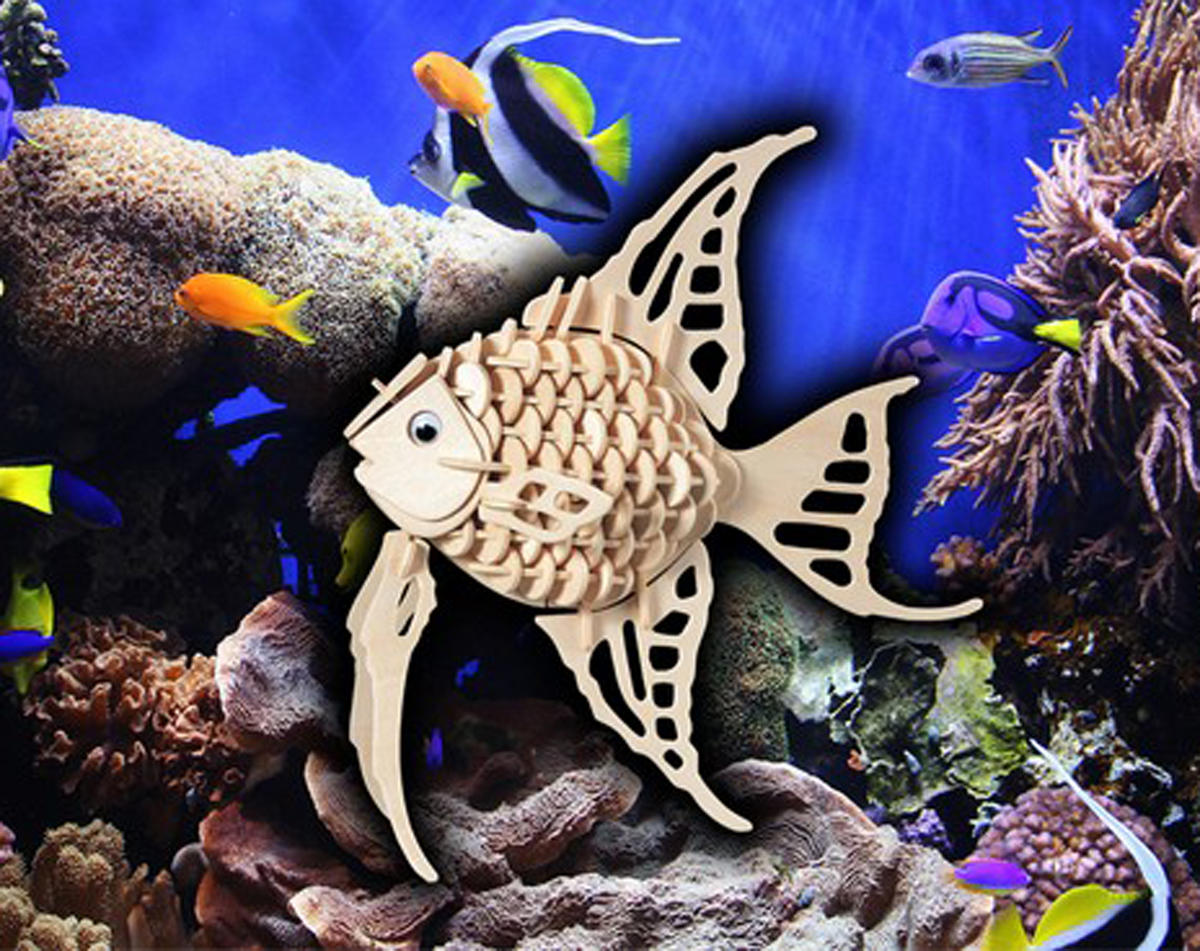 Puzzled Angel Fish 3D Puzzle