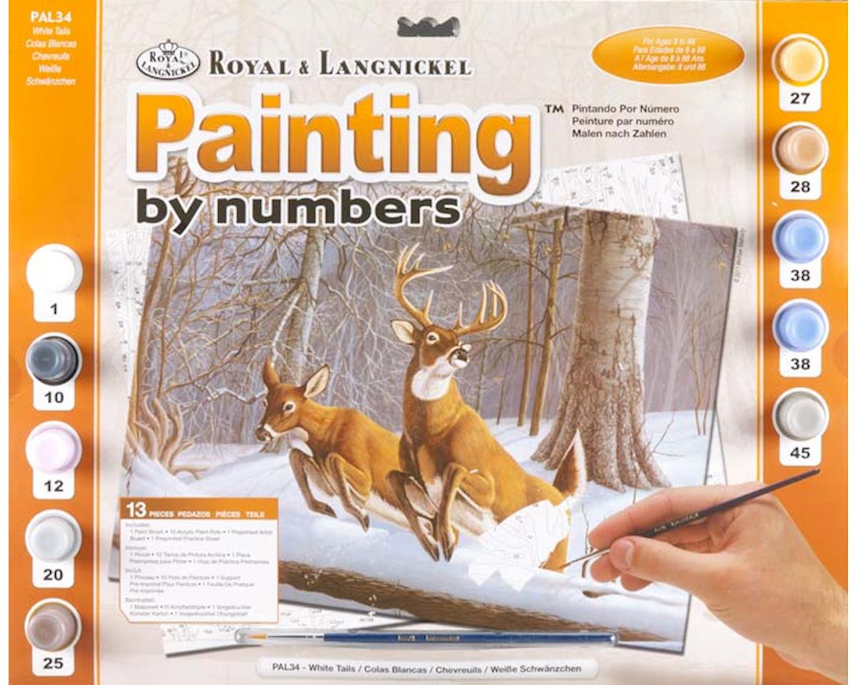 Royal Brush Manufacturing PAL34 Adult PBN White Tails