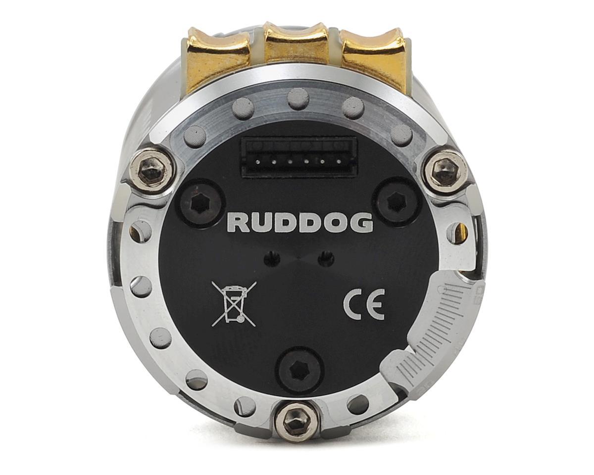 Ruddog RP540 540 Sensored Brushless Motor (6.5T)