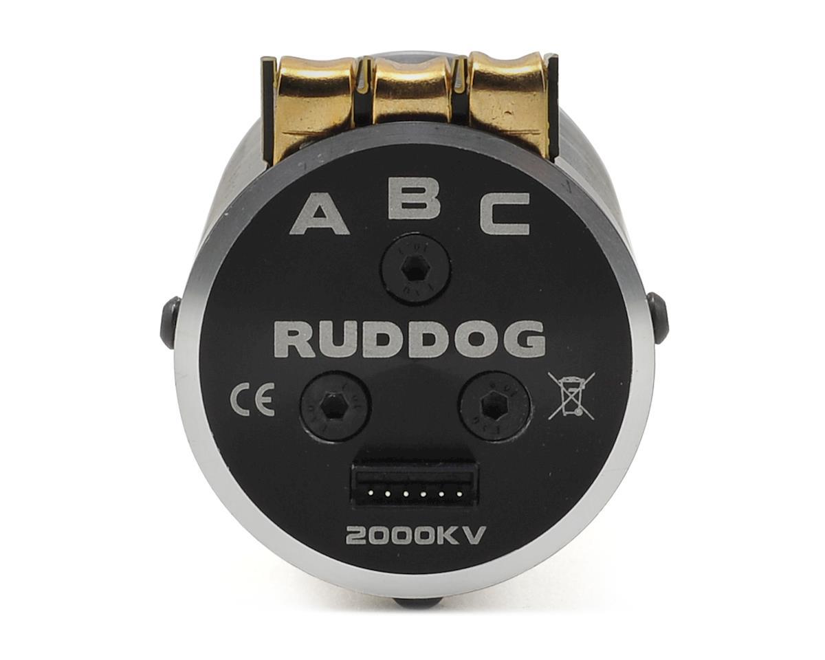 RP690 1/8 Sensored Brushless Motor (1800kV) by Ruddog