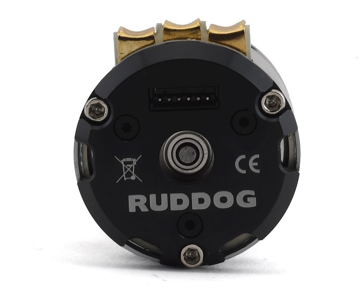 Ruddog RP540 Fixed Timing Sensored Brushless Motor (21.5T)