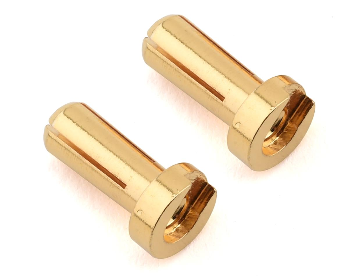 Ruddog 4mm Gold Male Bullet Plug (2) (12mm Long)