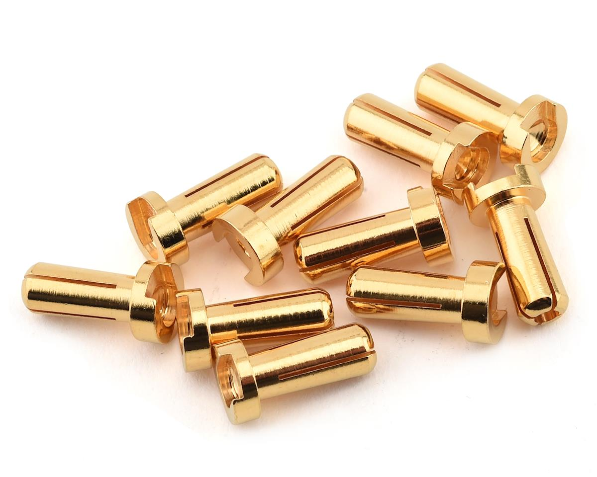 Ruddog 4mm Gold Male Bullet Plug (10) (12mm Long)