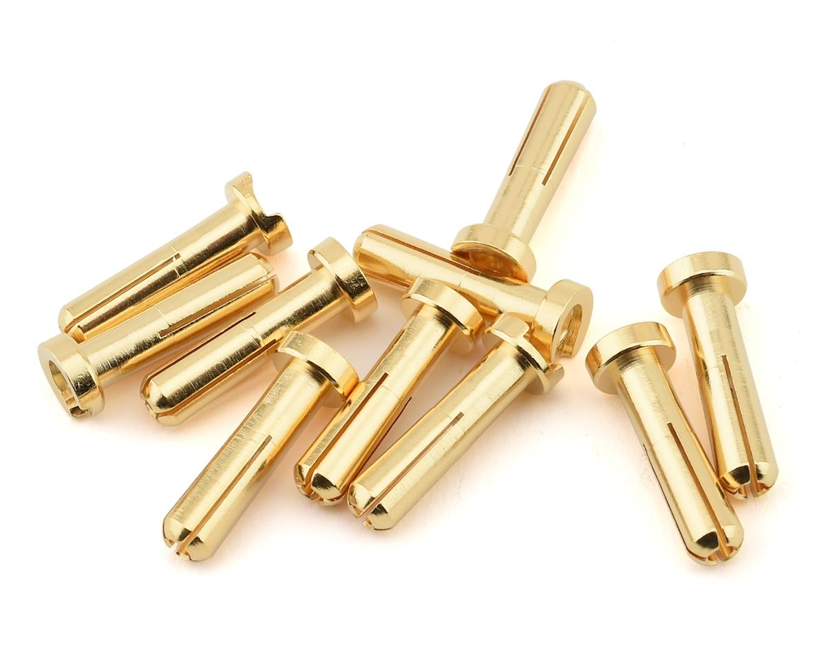 Ruddog 4mm Gold Male Bullet Plug (10) (18mm Long)