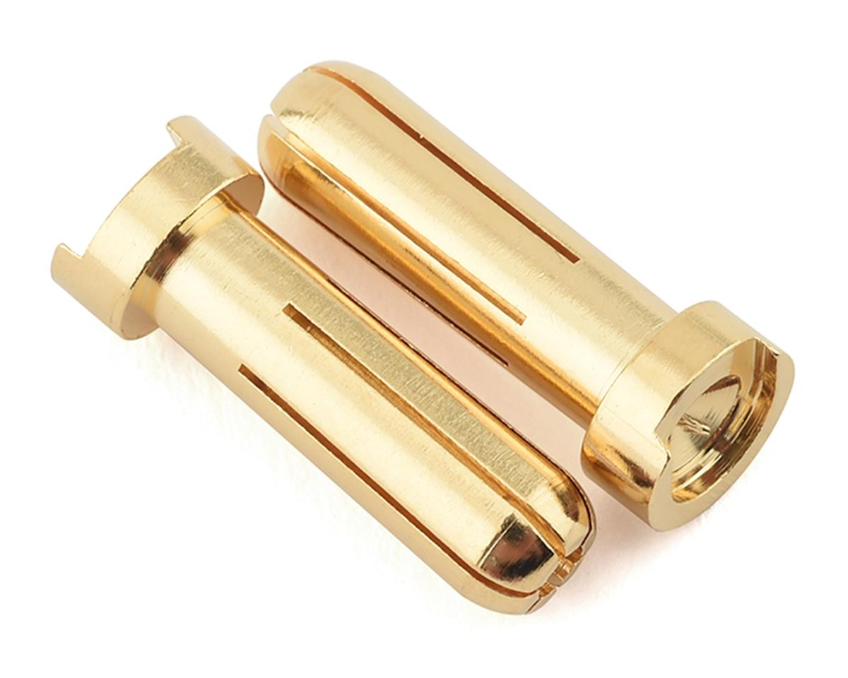 Ruddog 5mm Gold Male Bullet Plug (2)