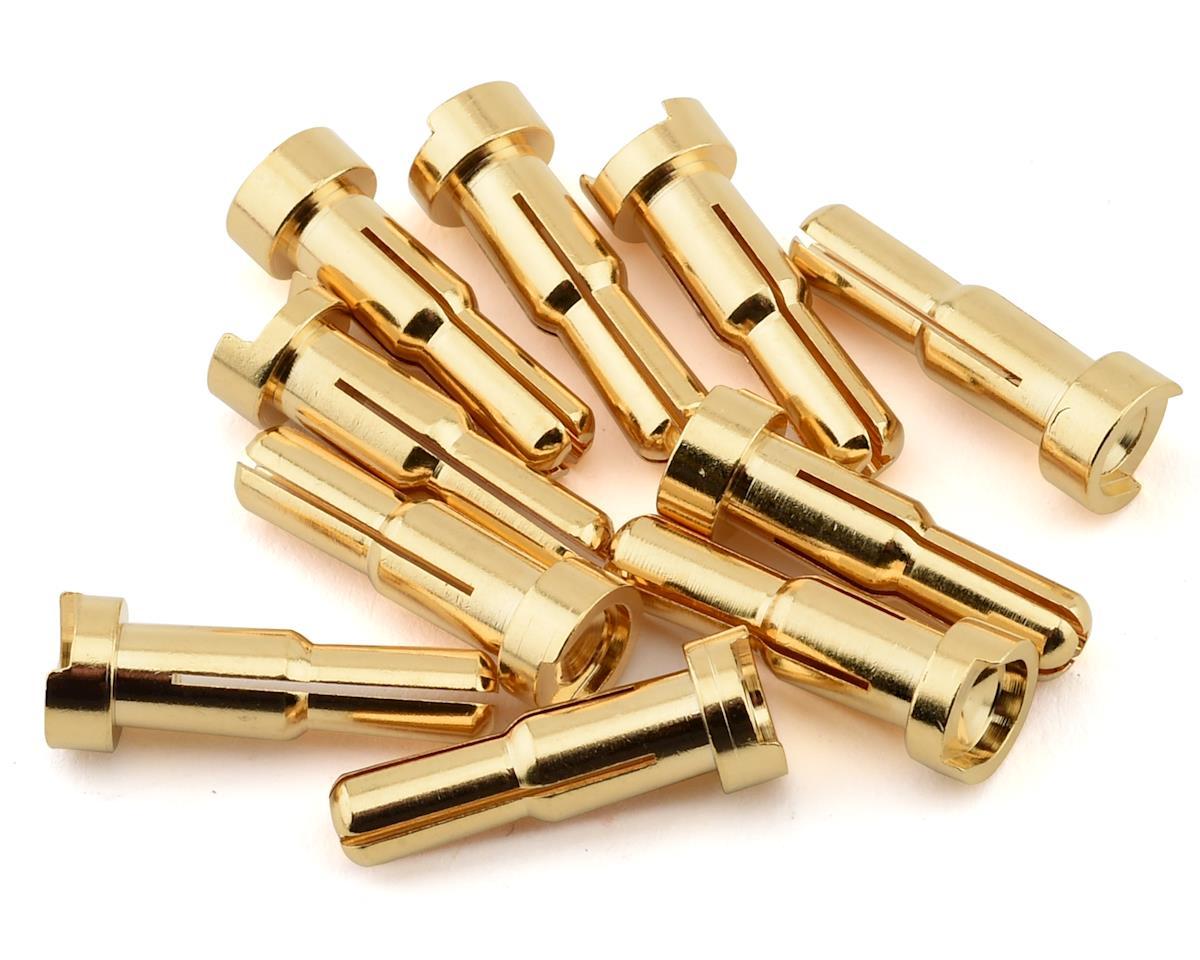 Ruddog 4/5mm Dual Gold Male Bullet Plug (10)