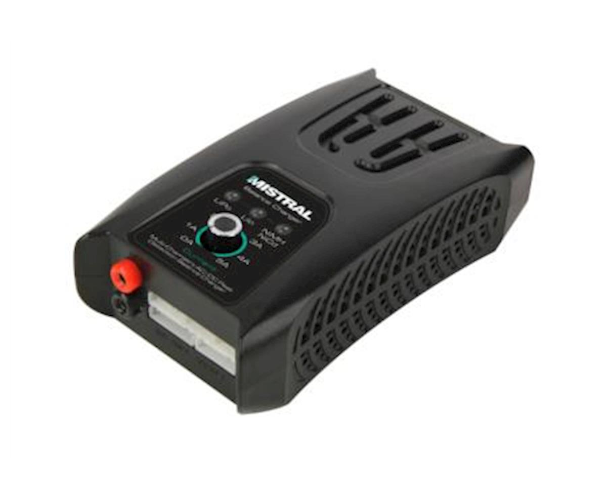 Radient *Bc* Mistral Led Lipo-Nimh 4A Charger