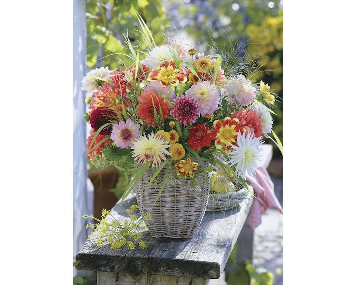 Ravensburger - F.x. Schmid 500Puz Beautiful Flowers