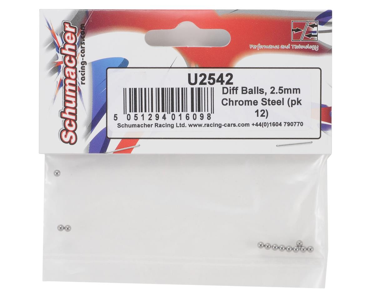 Schumacher 2.5mm Chrome Steel Differential Balls (12)