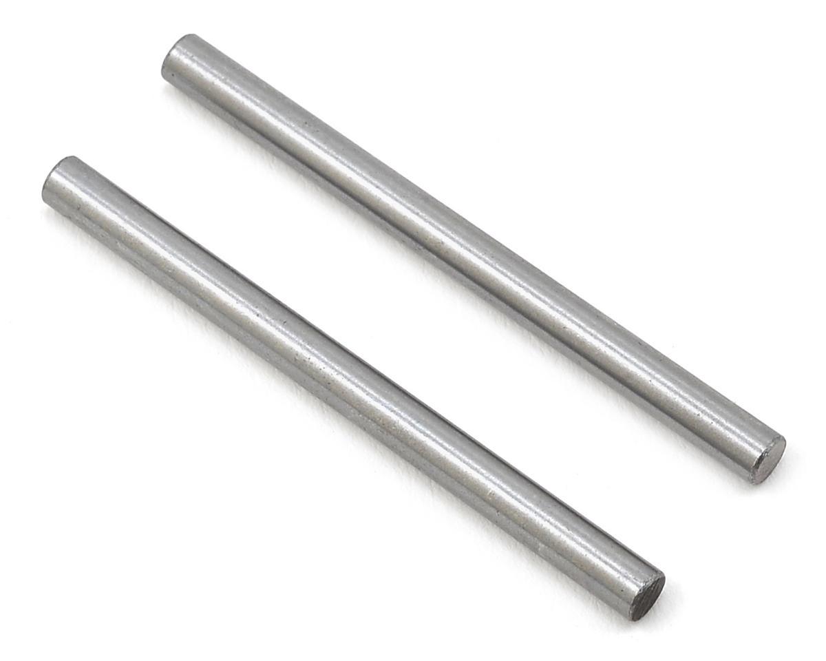 Inboard Pivot Pins (2) by Schumacher