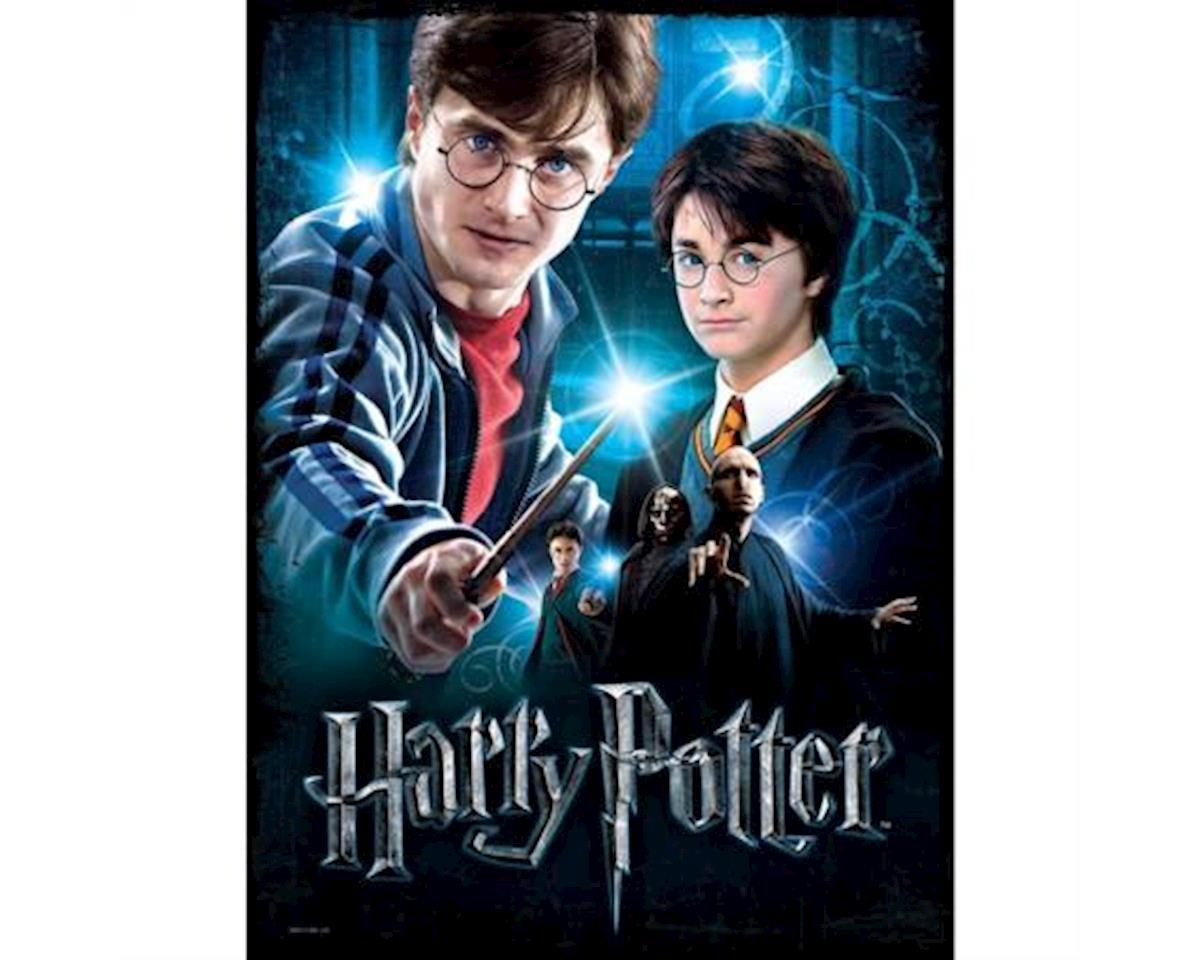 Wrebbit Harry Potter Poster Puzzle