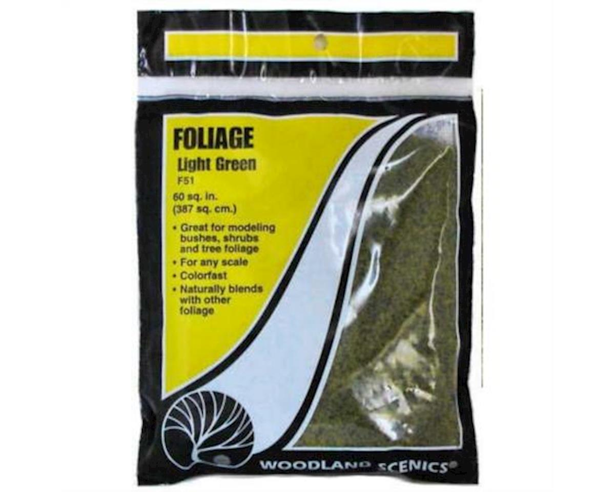 Woodland Scenics Foliage Bag, Light Green/90.7 sq. in.