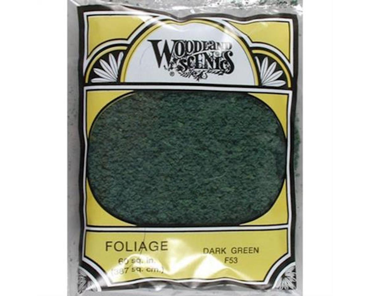 Woodland Scenics Foliage Bag, Dark Green/90.7 sq. in.