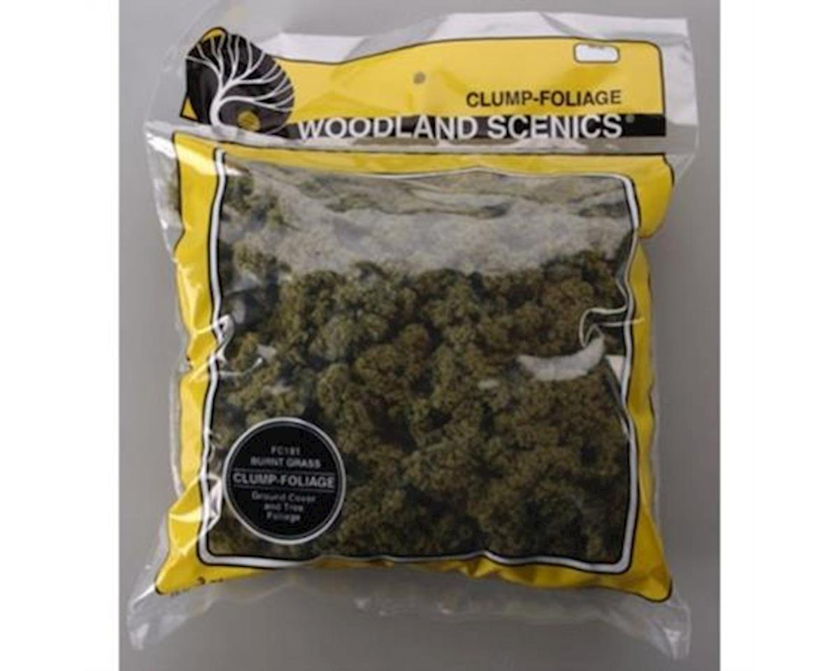 Woodland Scenics Clump-Foliage Bag, Burnt Grass/165 cu. in.