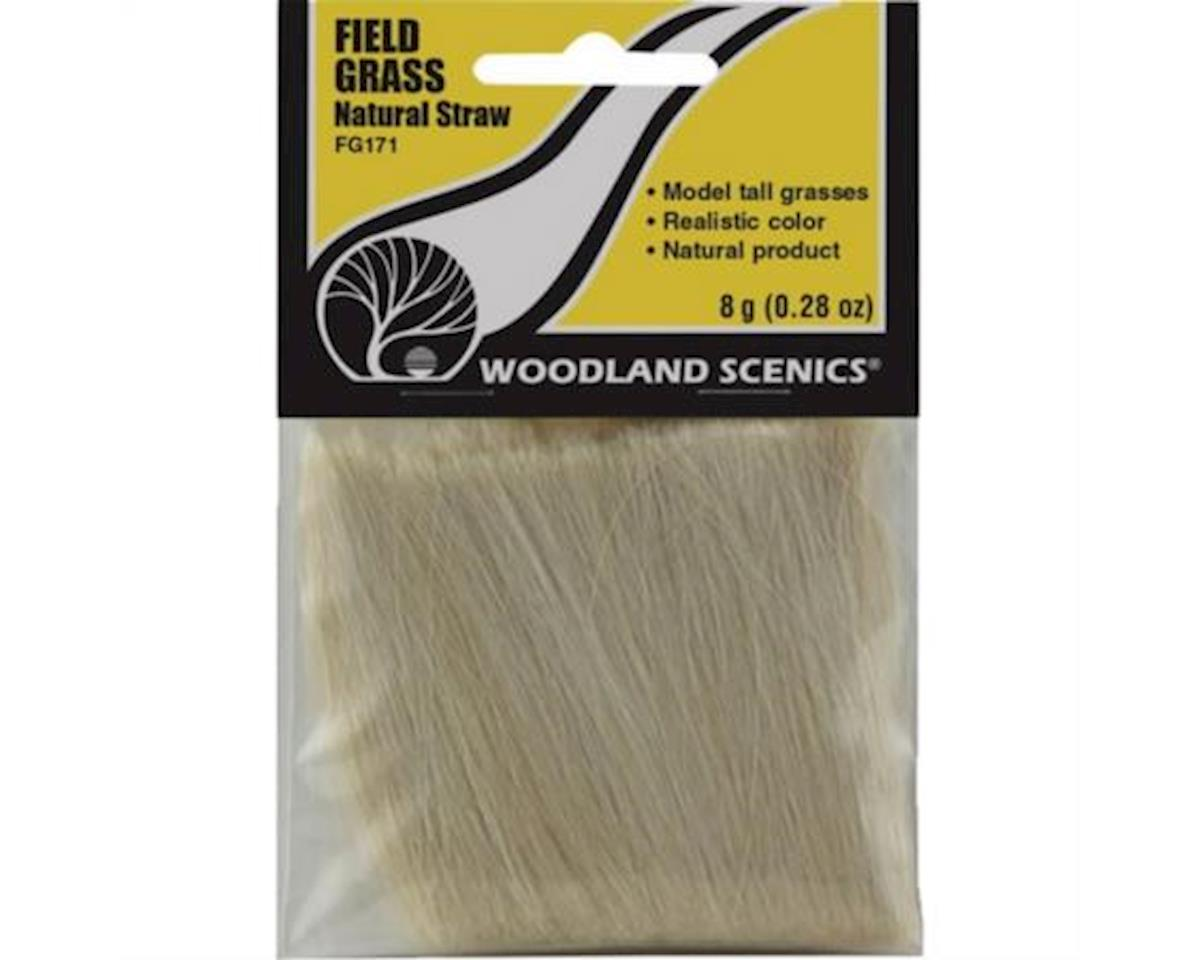 Field Grass, Natural Straw/8g by Woodland Scenics