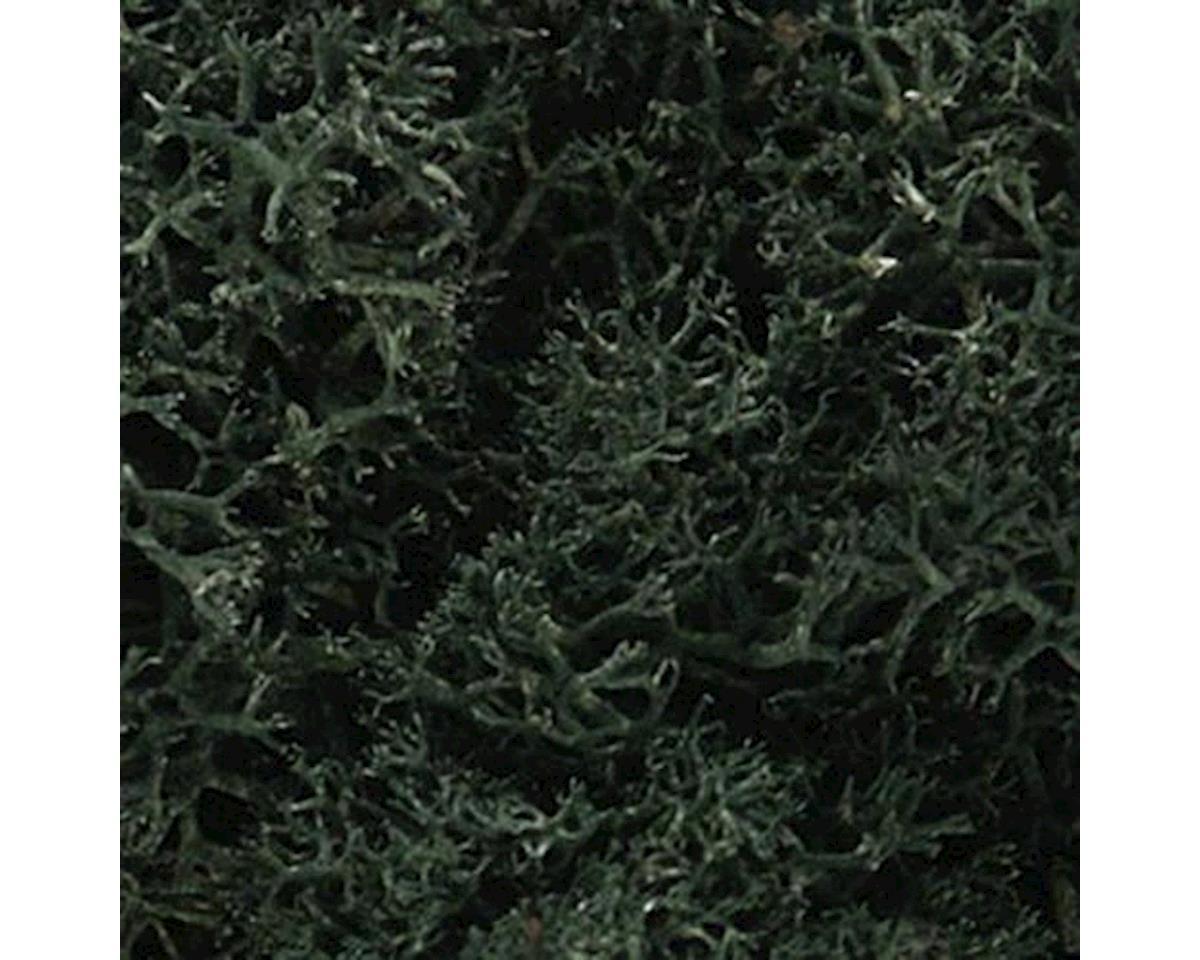 Lichen Bag, Dark Green/82 cu. in. by Woodland Scenics